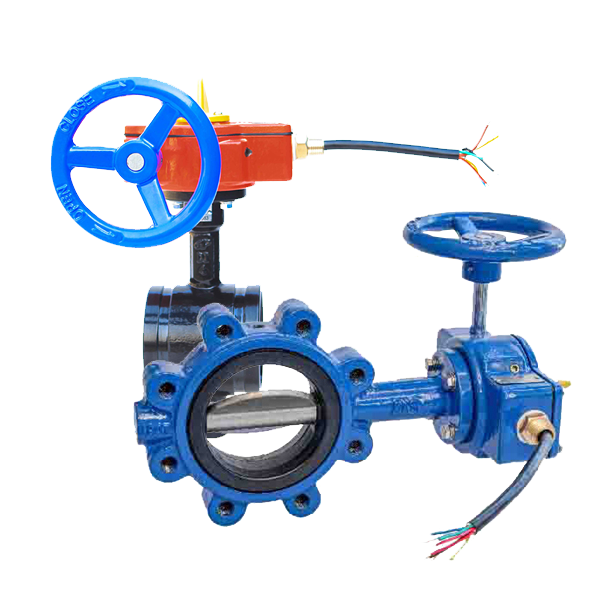 Butterfly/ Lugged Valves